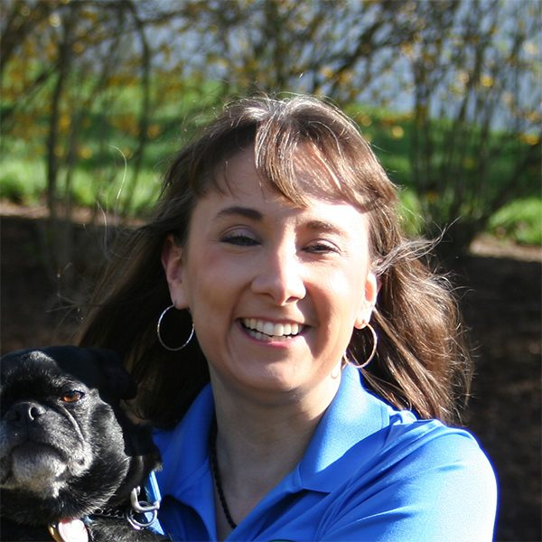 Dog Training Westchester Putnam profile