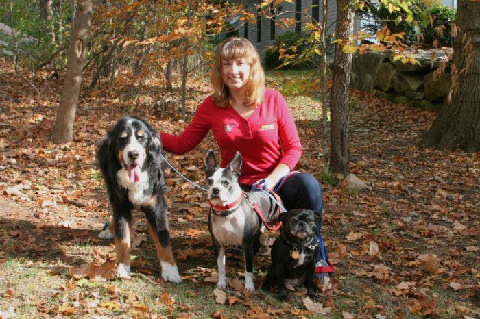 Home of Dog Training Westchester Putnam by Bark Busters